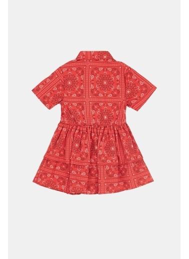 BG Baby Kız Bebek Desenli Elbise 20Pfwbg2901 Renkli